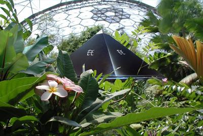 Shungite Lemurian Pyramid